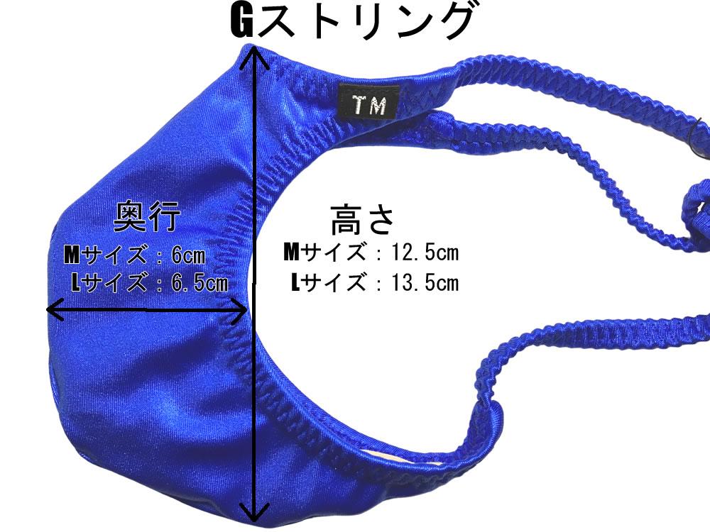 メンズビキニ  TMコレクション
