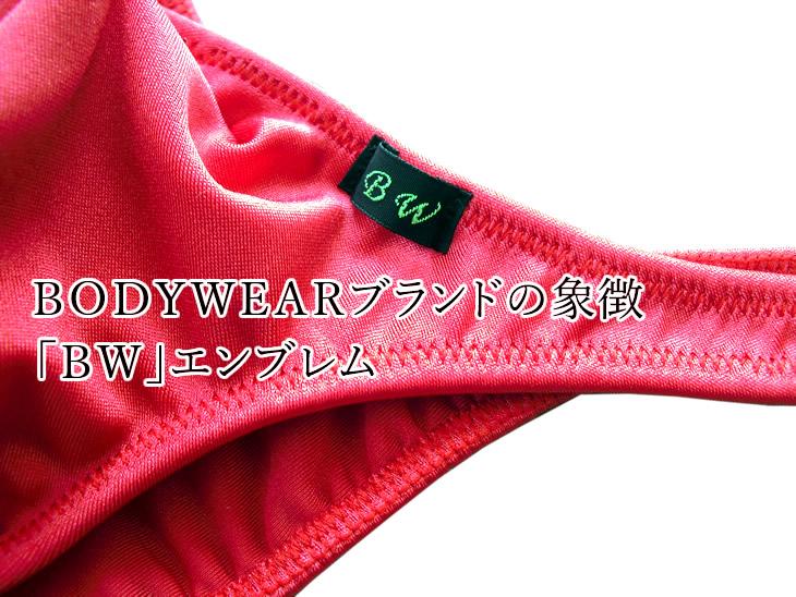 メンズ 水着 スタイリッシュ  リオバック (2003001)BODYWEAR/ボディウェアー